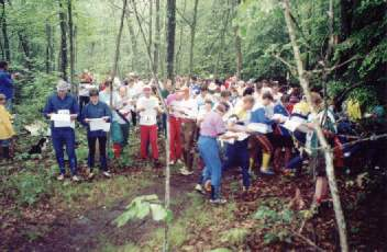 a crowd of orienteers in a wooded area, glancing at their maps